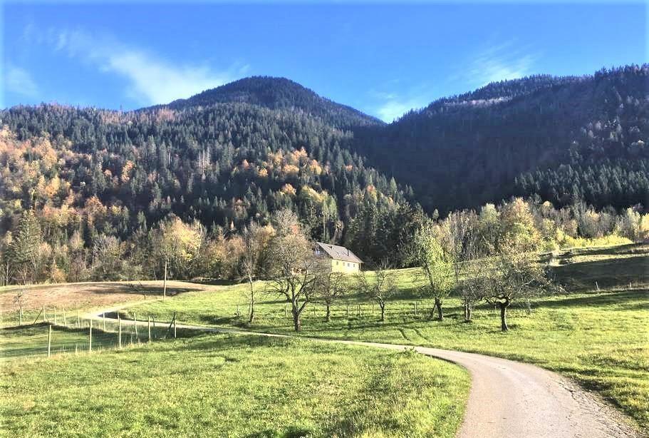 la ferme francej bohinj rental slovenia