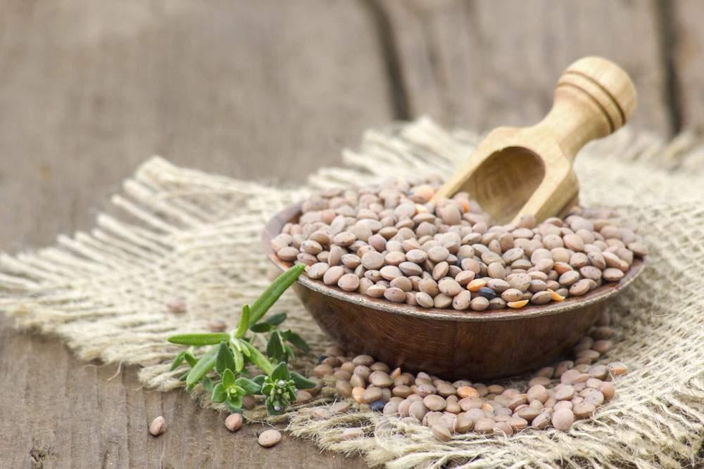lentils-what-ancient-greek-hoplites-ate-war