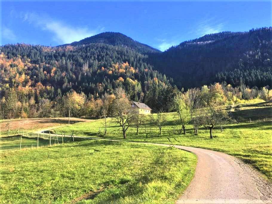 la-ferme-francej-the-stella-slovenia-vacation-holiday-rental