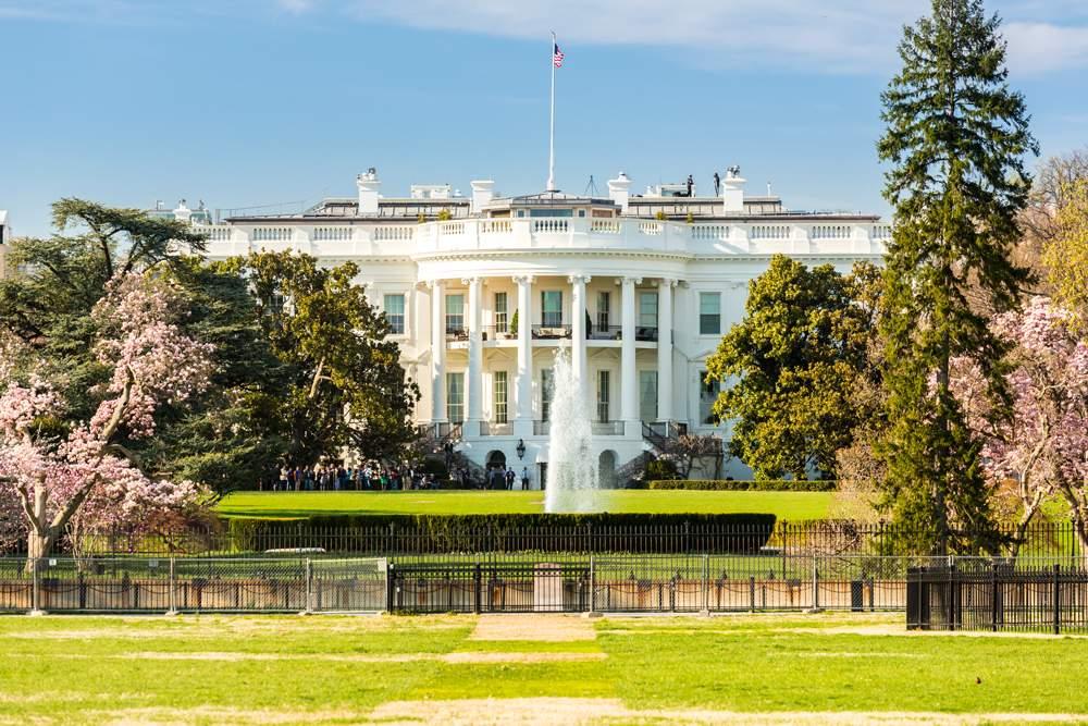 white-house-brac-stone