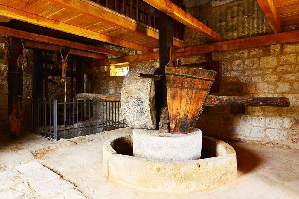 brac-olive-oil-museum